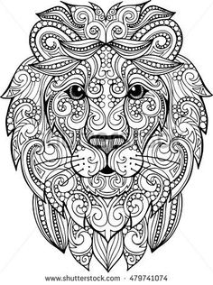 Hand drawn doodle zentangle lion illustration. Decorative ornate vector lion head drawing for coloring book