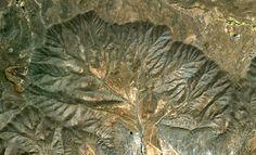 [Image]   25 Stunning Natural Fractals From Google Earth - TIMEWHEEL