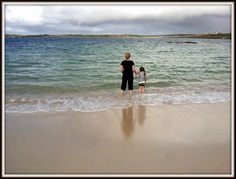 IF CARLSBERG DID FAMILY CAMPING TRIPS.. Secluded Beach, Connemara, Family Camping, Campsite, Ecology, Habitats, Trips, Coastal, Island