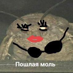 Naruto And Sasuke Kiss, Black Wallpapers Tumblr, Russian Memes, Memes Funny Faces, Me Too Meme, Man Humor, Best Memes, Jokes, Pictures