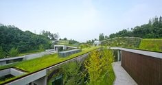 A sprawling green roof fuses this community center with Chongqing's mountainous landscape