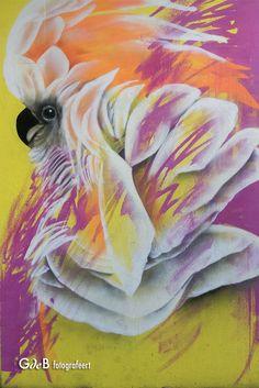 Parrot, Graffiti, Painting, Parrot Bird, Painting Art, Paintings, Painted Canvas, Graffiti Artwork, Drawings