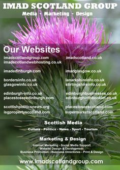 IMAD Scotland Group  (Media Marketing Design)  We currently have 17 websites nationwide and 37 social media accounts  See all our links at www.imadscotlandgroup.com/media/company/our-network/