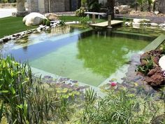 DIY Natural Pool | DIY Natural Pools – Build your own Swimming Pond