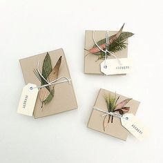 natural greens gift wrap