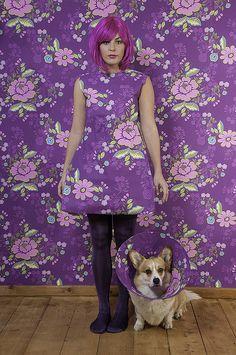 549af08c8ae 13 Best Decorate Dog Cone of Shame images