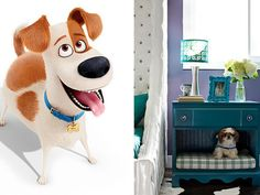 If 'The Secret Life of Pets' Stars Were Really Crafters Secret Life Of Pets, Hgtv, All Design, The Secret, Your Pet, Design Inspiration, Entertaining, Crafty, Stars