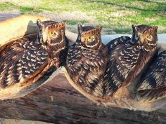 Shangrala's Chainsaw Wood Carving Art. It's amazing what he does with a chainsaw.