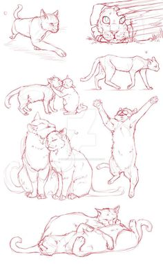 Cat Dump by QuietLittleLeaf