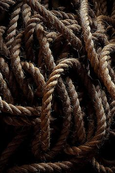 brown.quenalbertini: Rope | It's a Colorful Life