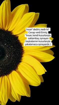 İnsan!! Best Quotes, Life Quotes, Allah Islam, Eminem, Beautiful Words, Karma, Movie Posters, Books, Instagram