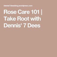 Rose Care 101 | Take Root with Dennis' 7 Dees