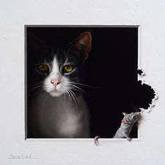 Marina Dieul: Cat and mouse oil painting, trompe-l'oeil. Cat Drawing, Painting & Drawing, Illustrations, Illustration Art, Foto Fantasy, Peek A Boo, Painting Competition, Photo Chat, Beautiful Cats