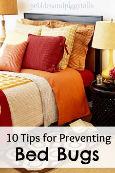 Bed bugs on pinterest bed bugs treatment bed bug trap for How do i prevent bed bugs