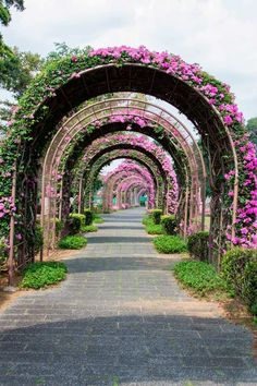Singapur – Keep up with the times. Garden Structures, Garden Paths, Beautiful Landscapes, Beautiful Gardens, Beautiful Streets, Diy Gardening, Baumgarten, Covered Walkway, Garden Arches