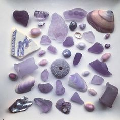 "Fiona or Fi (@fifi3058) on Instagram: ""Lavender hues from the sea#seaglass #seafinds #seatreasures #beachglass #beachfinds…"""