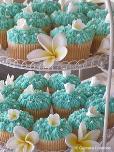 Love this color combination and cupcake design!