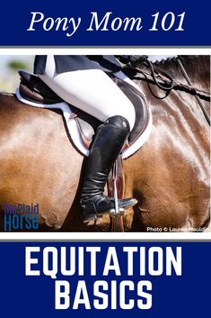 Equitation is known as a good, secure position, and it's the single most important thing your child will learn. This article is an in-depth look into the world of Horse showing for new moms. The equestrian show world is a huge one- it's best to be prepared!