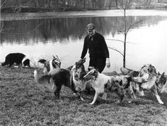 Albert Payson Terhune and his Collies.