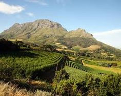 Photo about Panorama of a vineyard in the south of Franschhoek. Image of vineyard, africa, landscape - 2066637 South African Wine, Visit South Africa, Out Of Africa, Travel Tours, Africa Travel, Wine Country, Cape Town, Cool Places To Visit, The Good Place