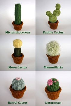 amigurumi amigurumi cactus Realistic crocheted cacti and Crochet Amigurumi, Amigurumi Patterns, Knitting Patterns, Crochet Patterns, Amigurumi Doll, Crochet Home, Love Crochet, Diy Crochet, Crochet Ideas