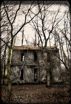 """An abandoned house within the vicinity of the Bell Witch Caves in Adams, Tennessee, USA.   The photographer clearly states it is not the actual """"Bell Witch House"""" of folklore.  photo © Scout 11"""