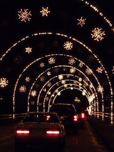 magical nights of lights at lake lanier islands lake lanier