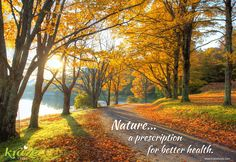 Want to clear your mind? Feeling low? Need some energy? Go outside and get some nature time! Studies show it is the perfect prescription for your health...and it is FREE! https://krazefoods.com/ #Krazefoods #nature #health