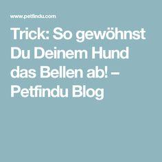 Trick: So gewöhnst Du Deinem Hund das Bellen ab! – Petfindu Blog