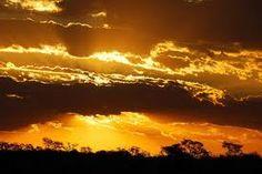 desert coucher de soleil - Recherche Google