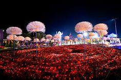 Jardins de Luz • Jardim de Siguta •