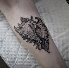 80 Seashell Tattoo Designs For Men - Oceanic Ink Ideas Tatt . Hand Tattoos, Ocean Sleeve Tattoos, Ocean Tattoos, Dog Tattoos, Cute Tattoos, Black Tattoos, Tattoos For Guys, Tatoos, Mermaid Tattoos