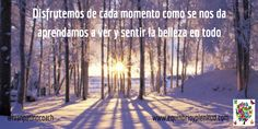 #acompañantedevidas