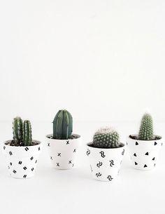 25 maneiras DIY simples para personalizar e pintar vasos de terracota Diy Simple, Easy Diy, Clever Diy, Cactus Vert, Cactus Cactus, Diy Y Manualidades, Succulent Pots, Plant Pots, Ideias Diy