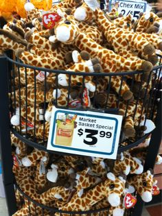 Giraffes sittings at mb#9 Glad these while you can ☝️going fast