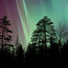 Papers.co wallpapers - nt02-aurora-night-sky-nature - http://papers.co/nt02-aurora-night-sky-nature/ - sky