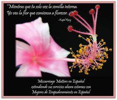 Miscarriage Matters, Inc en Español es el comienzo de una nueva era, mientras ayudamos a otros a sanar, nos sanamos más. Ahora tenemos Mujeres de Empoderamiento en espera, y en español. Si necesitas apoyo personalizado por favor siga el enlace para conectarse con un mentor de uno-a-uno, hoy mismo. Llene el formulario para Conectarse con un Mentor http://www.mymiscarriagematters.com/miscarriage-matters-en-espantildeol.html