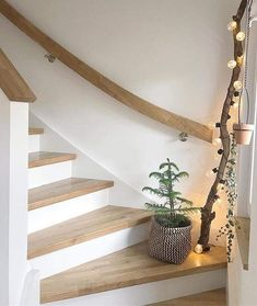 The cuddiest season. Well, through the Tuesday my pretty - Decoration For Home Home Interior Design, Interior And Exterior, House Stairs, My Dream Home, Beautiful Homes, Sweet Home, Design Case, New Homes, Home And Garden