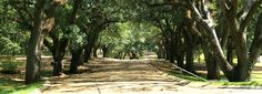 Alexandria LA | Alexandria Pineville Area - The Heart of Louisiana