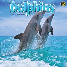Dolphins Wall Calendar: Arguably the most frisky and carefree creatures in the ocean, dolphins bring smiles to any face. This calendar brings wondrous photos of these playful mammals that will surely amaze and turn any frown upside down!  $12.99  http://www.calendars.com/Sea-Life/Dolphins-2013-Wall-Calendar/prod201300002522/?categoryId=cat00345=cat00345#
