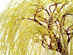 Tun Sie Liebe Bonsai-Bäume, aber kann nicht scheinen, um sie lebendig zu halten? Dann wäre ein wulstige Bonsai-Baum einfach perfekt für Sie.  Der goldene Trauerweide Bonsai Baum Gnade kommt von seinen langgezogenen, niedrigen Ästen, die droop erstelle ich einen schöne cascading Baldachin. Dieses Stück ist komplett aus Draht, Glas Rocailles in einer Mischung aus gelb, grün und klar und ein wenig floralen Band gemacht. Die lange wulstige Zweige sind verdreht Messingdraht und wichtigsten Äste…