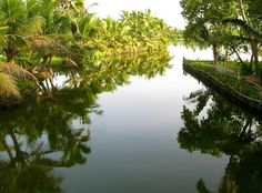 Tranquillity of the backwaters #India