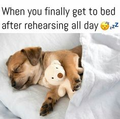 Dance, eat, sleep, repeat ♡