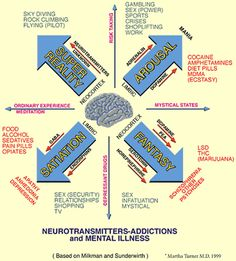 Neurotransmitters, Addictions and Mental Illness