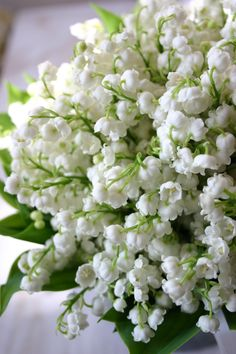 Lily of the valley flowers. Amazing Flowers, Fresh Flowers, Spring Flowers, White Flowers, Beautiful Flowers, Frühling Wallpaper, White Gardens, Flowers Nature, Flower Power