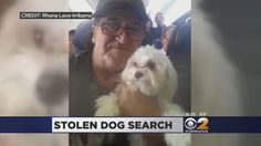 A heartbroken New Jersey truck driver is going to great lengths to find his stolen puppy.