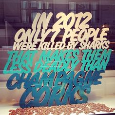 I knind of like the idea of having a window display with random and quirky facts. with this one, i would have done more decorations around the champagne