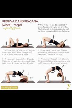 Yoga lovers follow me! (yogaholics)