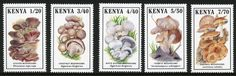 http://www.davidmoore.org.uk/stampWEB/Fungi-on-Stamps/IMAGES/Israel-to-Maldives/Kenya_1989.jpg  by Dvora Bochman