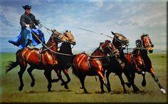 Horse Power  Equestrian Show in Hortobagy Puszta, Hungary